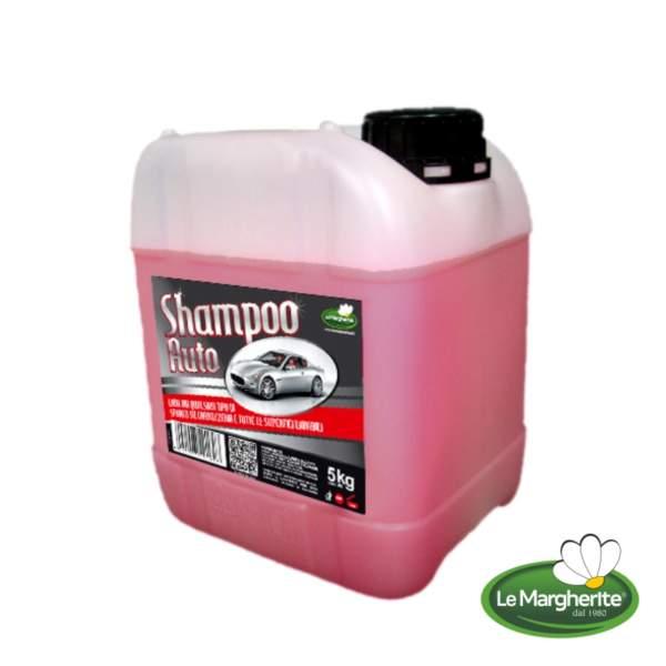 Shampoo auto cod.160